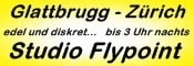 http://www.flypoint.ch/de/start
